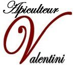 Excellence-Valentini